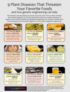Plant Disease-GMO solution